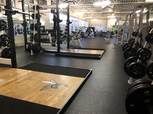 Hornet Weight Room and Fitness Center